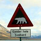 Beware of Polar Bears by John Dalkin