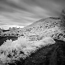 269 secs in Infra-red by Vikram Franklin