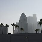 Los Angeles Skyline by Bryan W. Cole