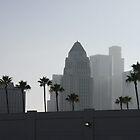 Los Angeles Skyline by Bryan W. Cole