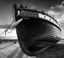 The Patient Kingfisher BW by Andy Freer