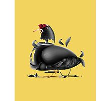 Street Pigeon Photographic Print