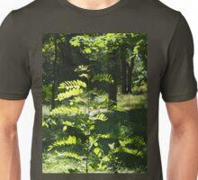 Young sapling acacia Unisex T-Shirt