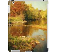 Fall Time at Rum River iPad Case/Skin