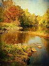 Fall Time at Rum River by Lucinda Walter