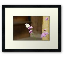 the lightness of being Framed Print