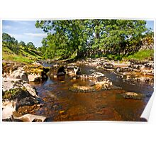 River Wharfe in Langstrothdale Poster
