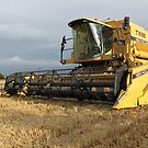 Combine Harvester by Mike Paget