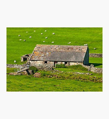 Dales Barn Photographic Print