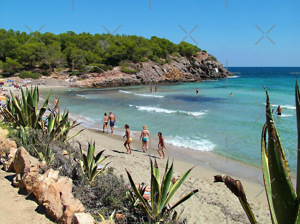 Cala Nova Beach by Tom Gomez