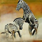 Zebras by Barry W  King