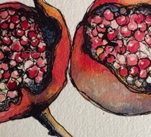 Pomegranate. Pen and wash 2012 Sticker