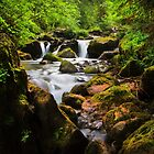 Alpine Falls by Dave Hare