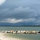 Approaching Storm by Jennie L. Richards