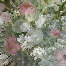 Floral Lace by Jennie L. Richards