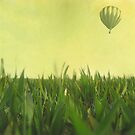 Balloon by Caterpillar