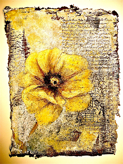 The Poppy Journals...The Document by ©Janis Zroback