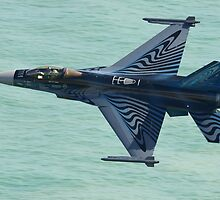 F16 Fighting Falcon Flying Low Level by Shane Ransom