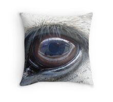 Buford's Eye Throw Pillow