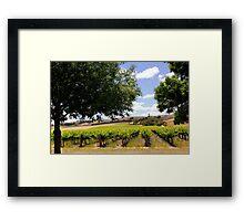 Australian Vineyard Landscape Framed Print