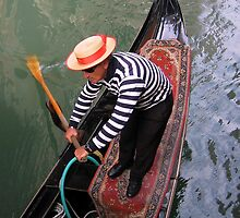 Don,t feed the gondolas by Alan Kenny