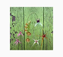 Cerise Spider Orchid on Green Painted Wall, native orchids of Western Australia. Classic T-Shirt