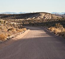 Groom Lake Road, Area 51, Rachel, Nevada by Henry Plumley