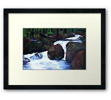 Tranquil Forest Stream Framed Print