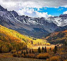 Uncomphgre National Forest by Janet Fikar