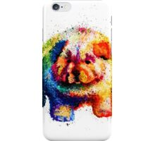 Cute Rainbow Colored Puppy iPhone Case/Skin