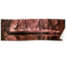 IR River Bank Redlands Poster