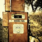 67 Cents A Gallon! by pat gamwell