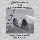 Chihuahua and the Important Message--Take Time to Smell the Flower T-Shirt by Corri Gryting Gutzman