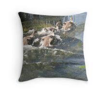 Cygnets- WaterFun Throw Pillow