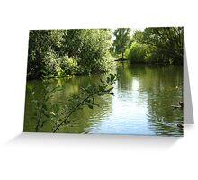 Beyond- The Lake Greeting Card