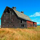1884 Barn, Somers, MT by Maria Elena  Black
