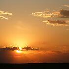 Orange Crush Sunset by Marie Smith