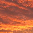 sky on fire by Éilis  Finnerty Warren