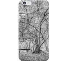Seat of The Soul iPhone Case/Skin