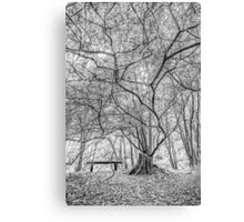 Seat of The Soul Canvas Print