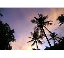 PALM TREES & SUNSET Photographic Print