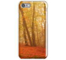 Russet and Gold iPhone Case/Skin