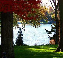 Autumn Calm ~ Lake Lotawana by Cynthia Chronister