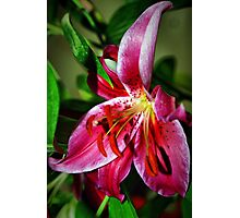 Eye Catching Photographic Print
