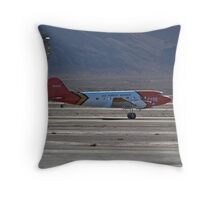 U.S. Forest Service DC-3 Throw Pillow