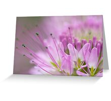 Dreamy Bee Flower Greeting Card