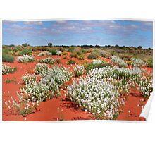 Simpson Desert 2010 Poster