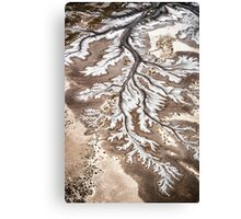 River Branches Canvas Print