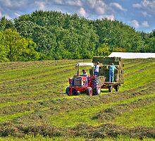 Bailing Hay by ECH52