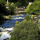 River Dee, LLangollen by saxonfenken